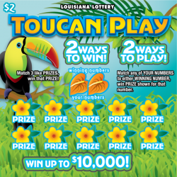 Toucan Play image